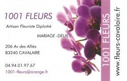 Logo 1001 fleurs
