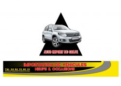 Logo auto import